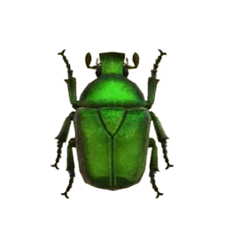 Drone Beetle - Animal Crossing: New Horizons Insect Guide