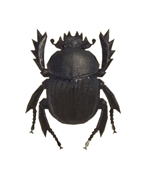 Dung Beetle - Animal Crossing: New Horizons Insect Guide