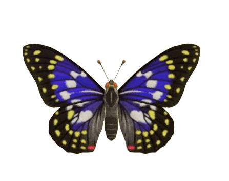 Great Purple Emperor - Animal Crossing: New Horizons Insect Guide