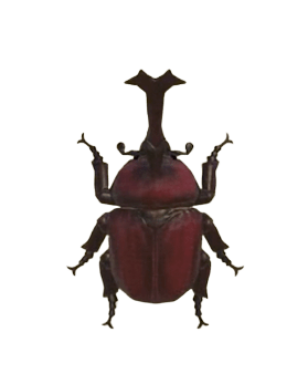 Horned Dynastid - Animal Crossing: New Horizons Insect Guide