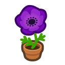 Purple-windflower Plant - Animal Crossing: New Horizons